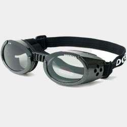 lunettes - Chien Biker