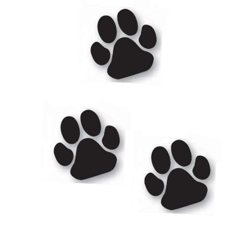 Lot de 3 autocollants patte noire chien -11cm-Vitrine-Vitres-1
