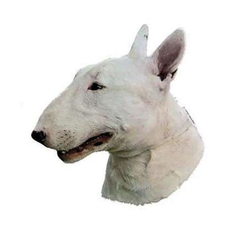 Autocollants Bull Terrier blanc - 7 cm - Lot de 4 de marque :