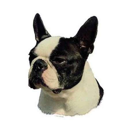 Autocollants Boston Terrier - 7 cm - Lot de 4 de marque :