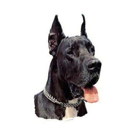 Autocollants Dogue Allemand noir - 7 cm - Lot de 4 de marque :