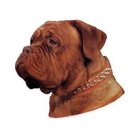 Autocollants Dogue de Bordeaux - 7 cm - Lot de 4 de marque :