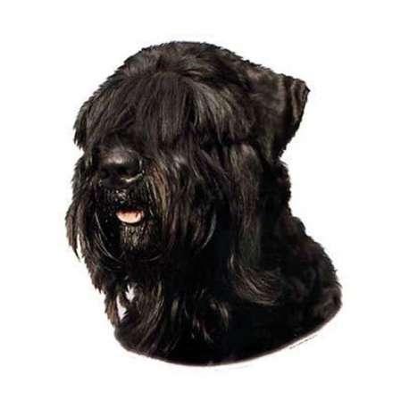 Autocollants Terrier noir russe - 7 cm - Lot de 4 de marque :
