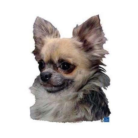 Autocollants Chihuahua - 7 cm - Lot de 4 de marque :