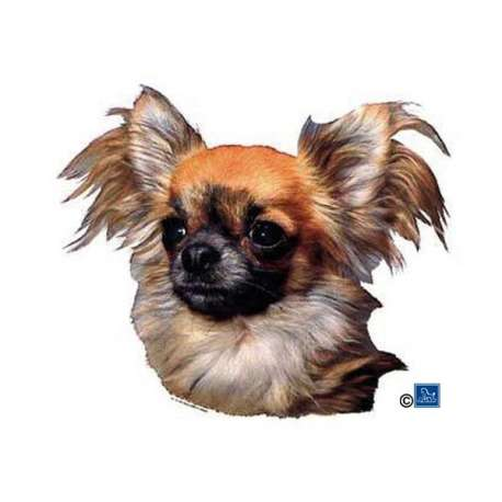 Autocollants Chihuahua poils longs - 7 cm - Lot de 4 de marque :