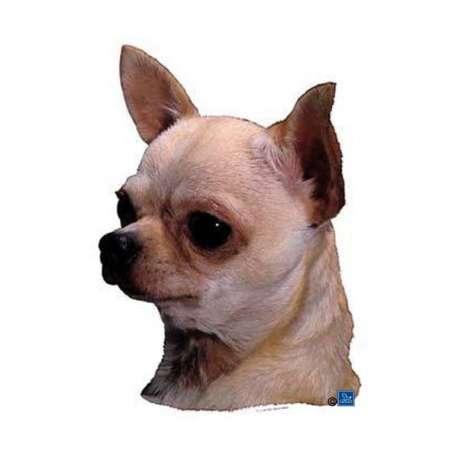 Autocollants Chihuahua poils courts - 7 cm - Lot de 4 de marque :