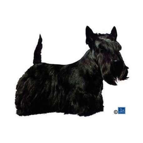 Autocollants Scottish Terrier - 7 cm - Lot de 4 de marque :