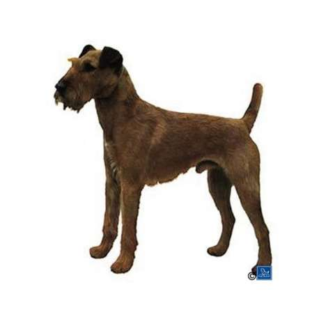Autocollants Irish Terrier - 7 cm - Lot de 4 de marque :