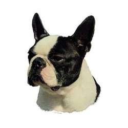 Autocollants Boston Terrier - 14 cm - Lot de 2