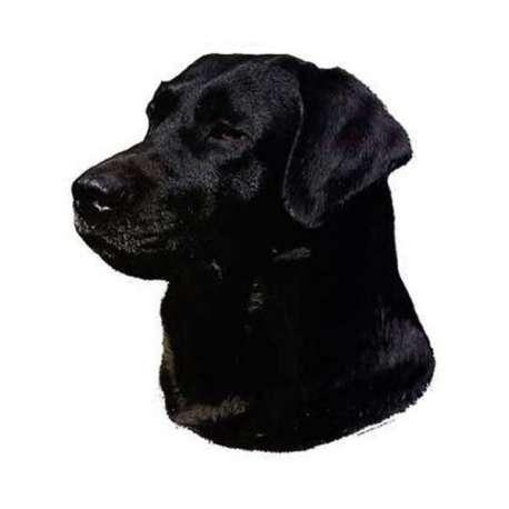 Autocollants Labrador noire - 14 cm - Lot de 2 de marque :
