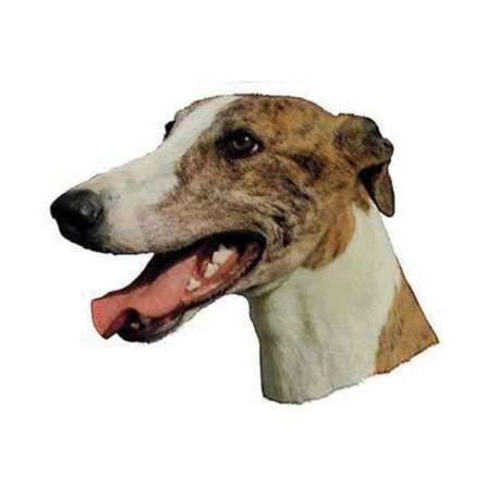 Autocollants Levrier anglais Greyhound - 14 cm - Lot de 2 de marque :