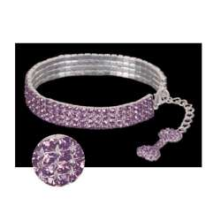 Collier Strass amethyste pour chiens de marque : CANISLANA For dogs