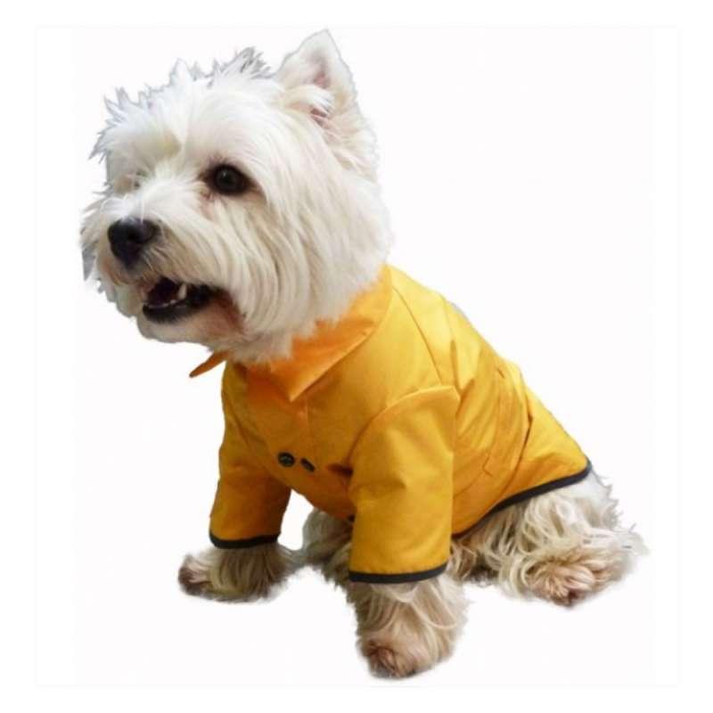 cir 233 imperm 233 able pour chien cherbourg