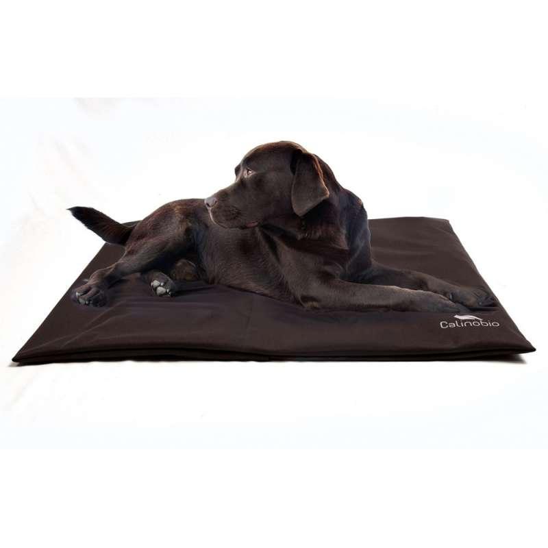 tapis chauffant et rafra chissant pour chien et chat. Black Bedroom Furniture Sets. Home Design Ideas