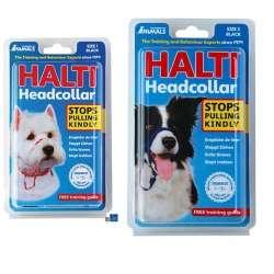 Harnais frontal Halti de marque : HALTI