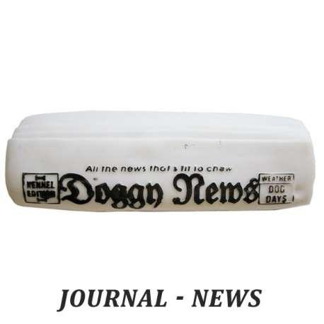 Journal - jouet pour chien