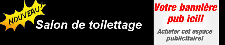 Salon de toilettage